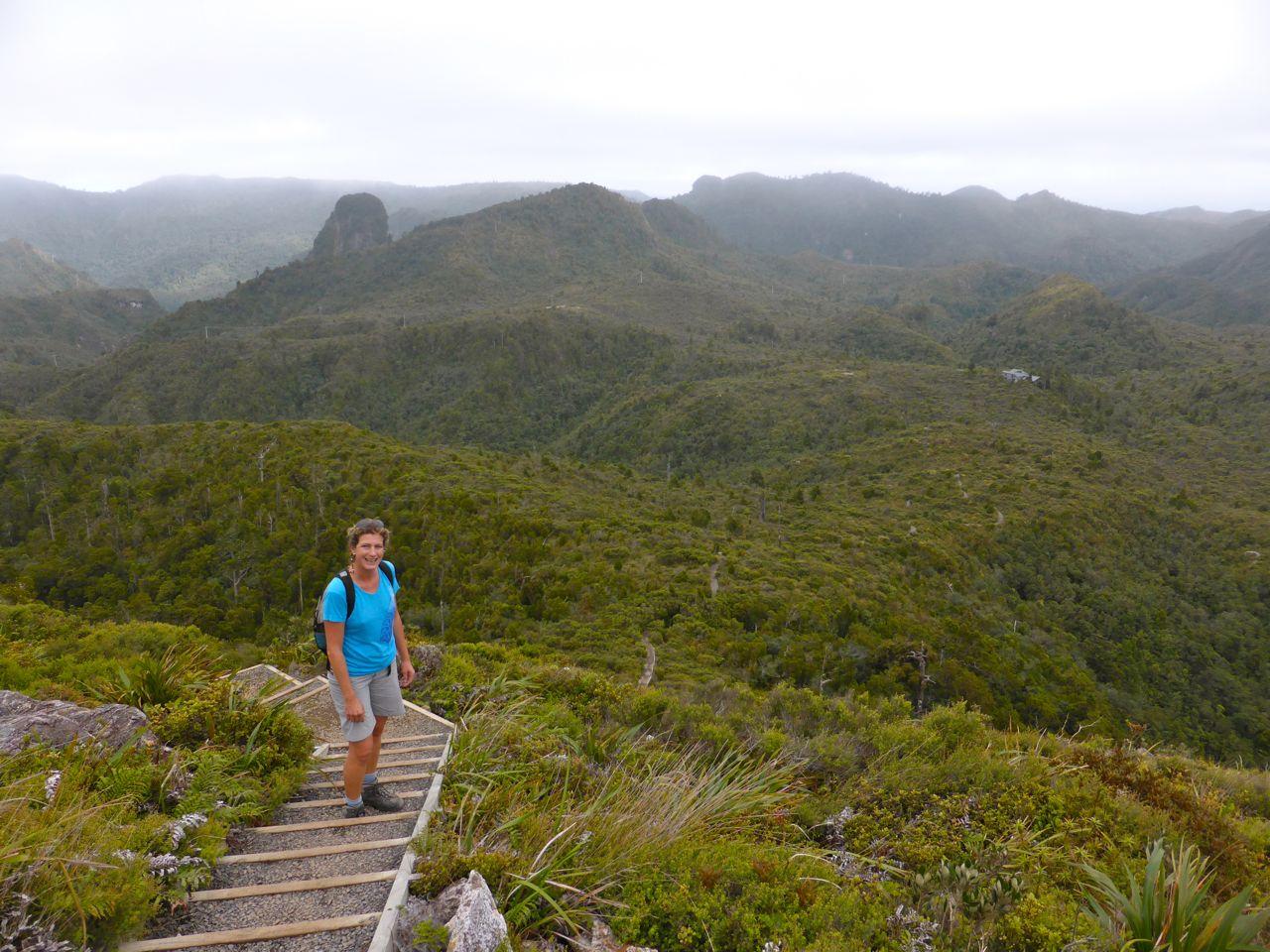 Wandeling naar the pinnacles op Coromandel