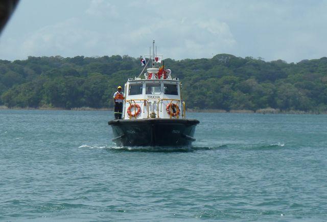 Deze pilotboot komt de advisor aan boord brengen