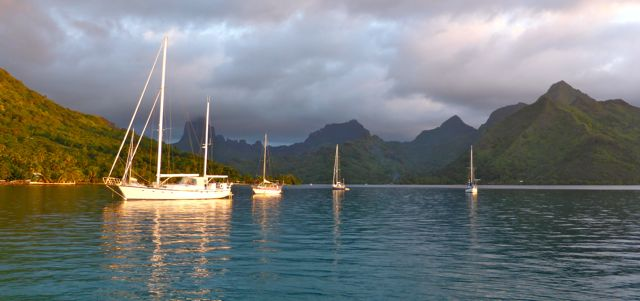 Prachtig avondlicht kleurt de boten haast goud, gaaf tegen die achtergrond