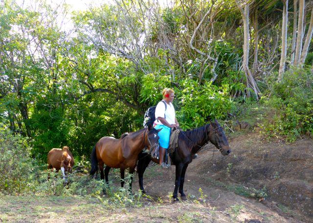 Daar komen de paarden over de pas gelopen terwijl wij genieten van het uitzicht