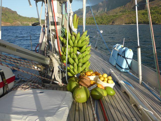 Fruit, allemaal gratis uit de natuur gehaald.